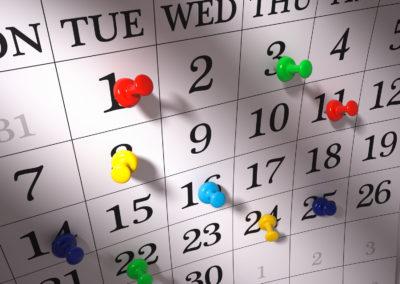 LNV Calendar / Calendario